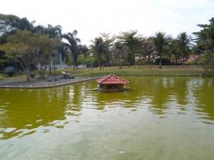 lago-4